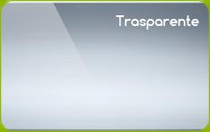 card in pvc trasparente